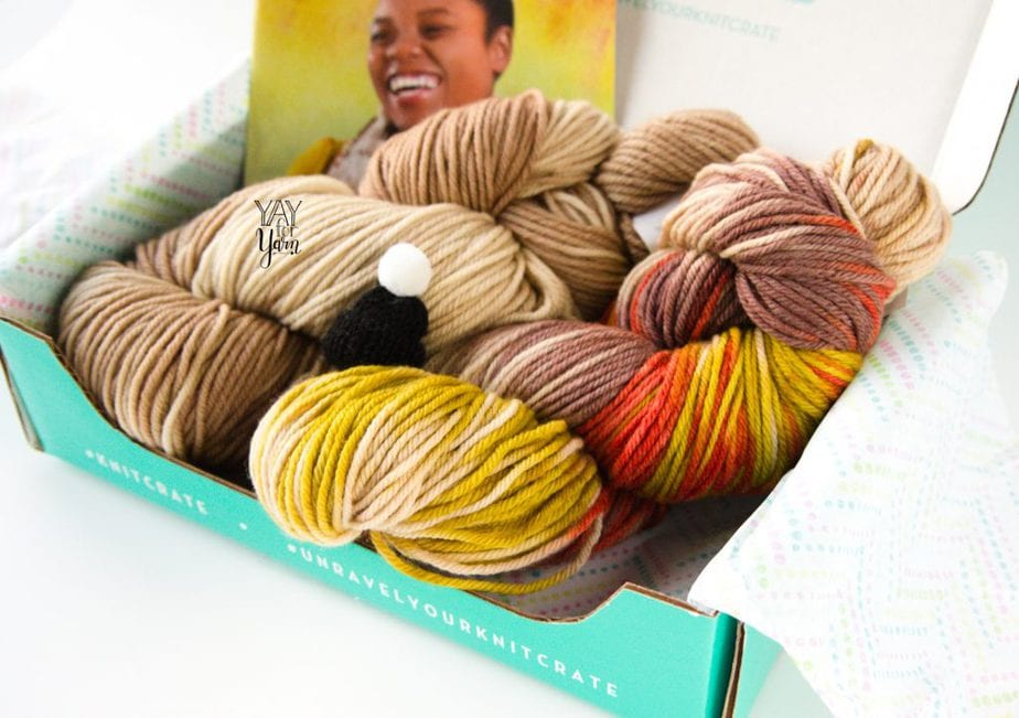 january 2020 knitcrate, with 2 skeins of hand dyed yarn and a tiny knitted hat