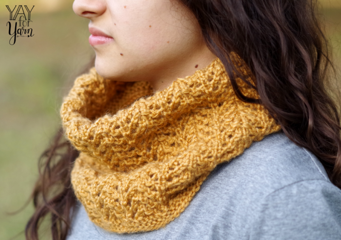 Afternoon Stroll Cowl - Free Knitting Pattern by Yay For Yarn